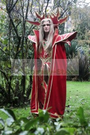 World of Warcraft WOW Prince Kael'thas Sunstrider Cosplay Costume