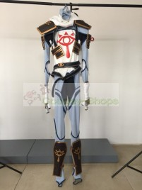 Legend of Zelda Breath of the Wild Link Sheikah Stealth Armor Ninja ver Cosplay