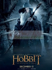 The Lord of the Rings / The Hobbit The Desolation of Smaug Gandalf Full Cosplay Costume