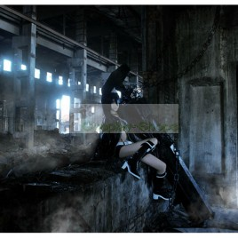 BLACK ROCK SHOOTER BRS Cosplay Costume